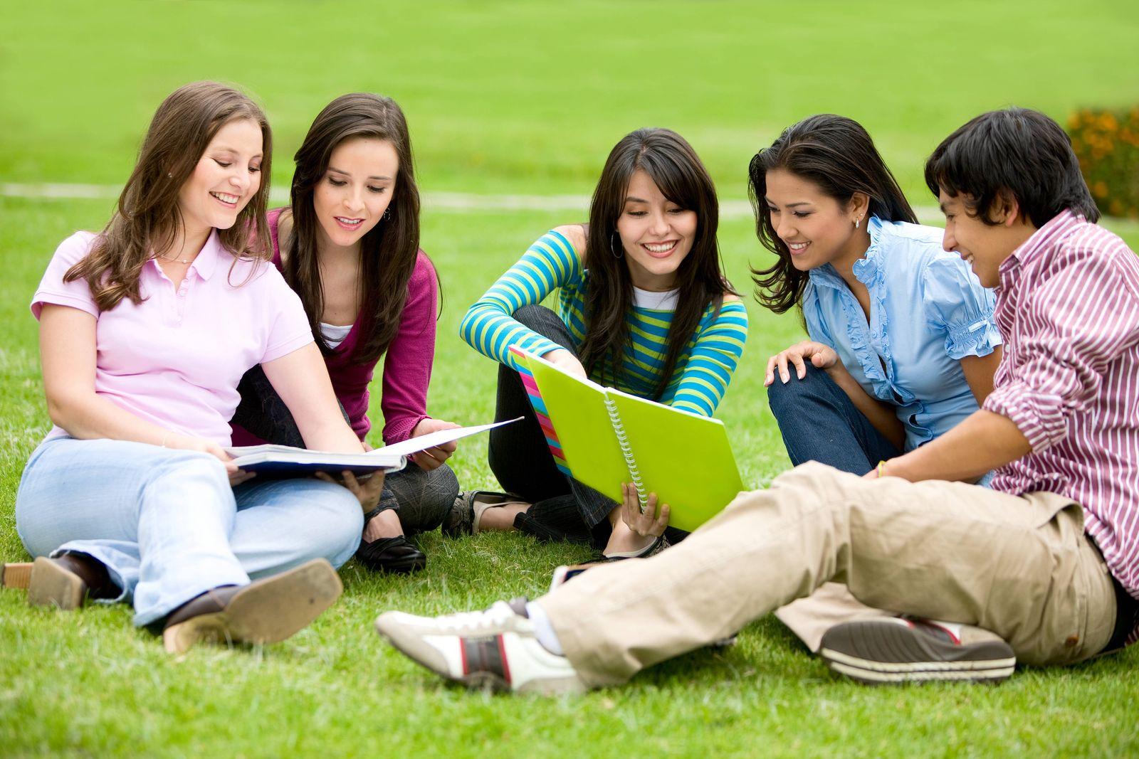 EINMALIGE VERWENDUNG Studenten Wiese