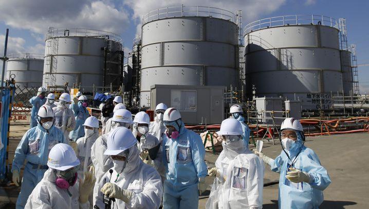Atomruine Fukushima: Kernschmelze und kontaminierte Wassermassen