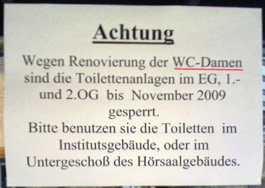 EINMALIGE VERWENDUNG Zwiebelfischchen / Renovierung der WC-Damen