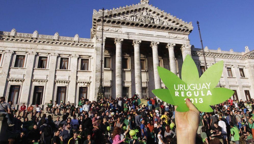 Legalisierung von Marihuana: Drogenversuchslabor Uruguay