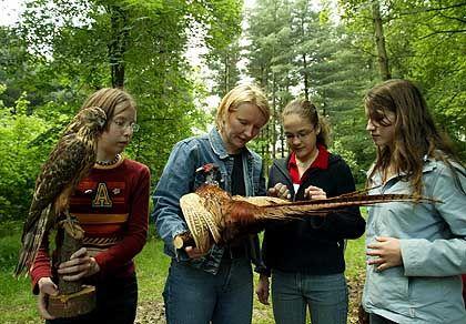 Biologieunterricht im Wald (in Witten): Noch nie ein Reh gesehen