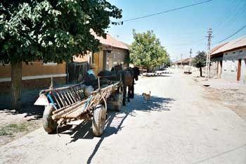 Rumänisches Dorf: Fruchtbarer Boden für Aberglauben