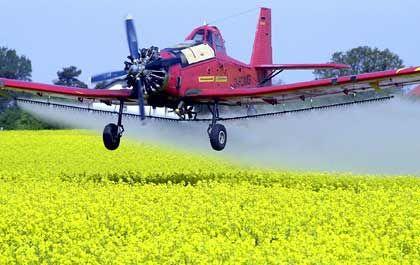 Sprühflugzeug: Pestizidesteigern das Parkinson-Risiko
