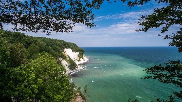 Nationalparks, Biosphärenreservate und Naturparks im Osten Deutschlands: 30 Jahre Naturschutz