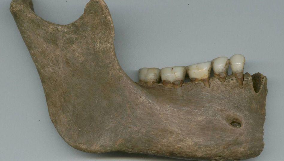 Wie unterscheidet man nun einen toten Angelsachsen von einem Toten, der das obere Themsetal seine Heimat nannte - wenn nur noch die Knochen und Zähne übrig sind?