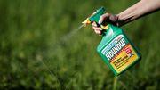 Neue Studientricks von Monsanto aufgedeckt
