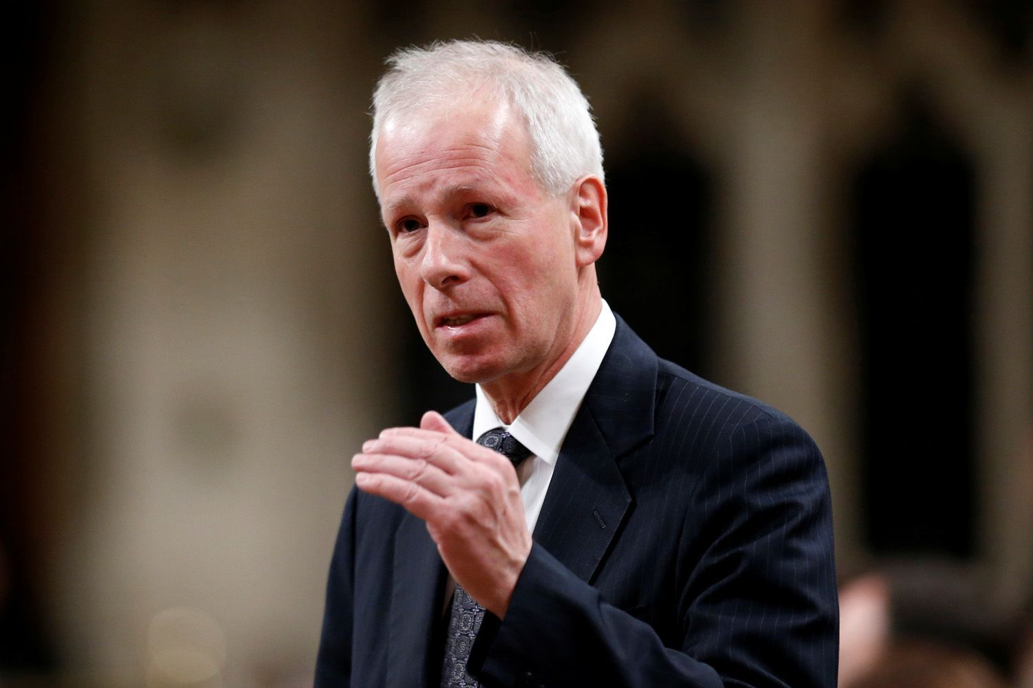 Canada's Foreign Minister Stephane Dion speaks in the House of Commons in Ottawa