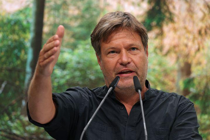 Der Co-Parteichef der Grünen, Robert Habeck