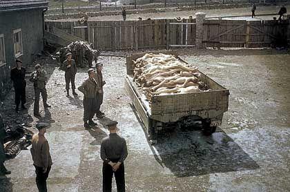 KZ Buchenwald nach der Befreiung durch die Alliierten: Frieden und Demokratie wurden mit dem Schwert nach Europa gebracht