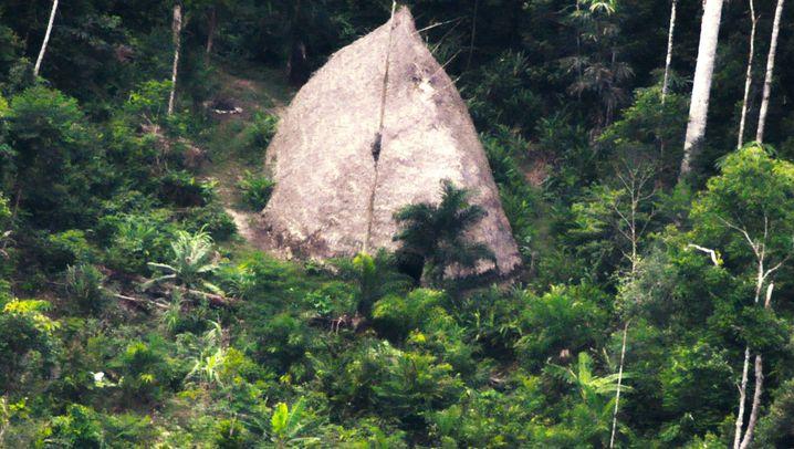 Amazonien: Allein im Wald