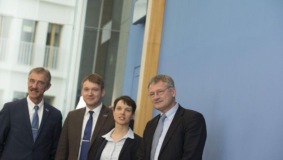 AfD-Politiker (v. l.) Junge, Poggenburg, Petry und Meuthen