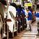 Drei Bundesländer fordern Autokaufprämien