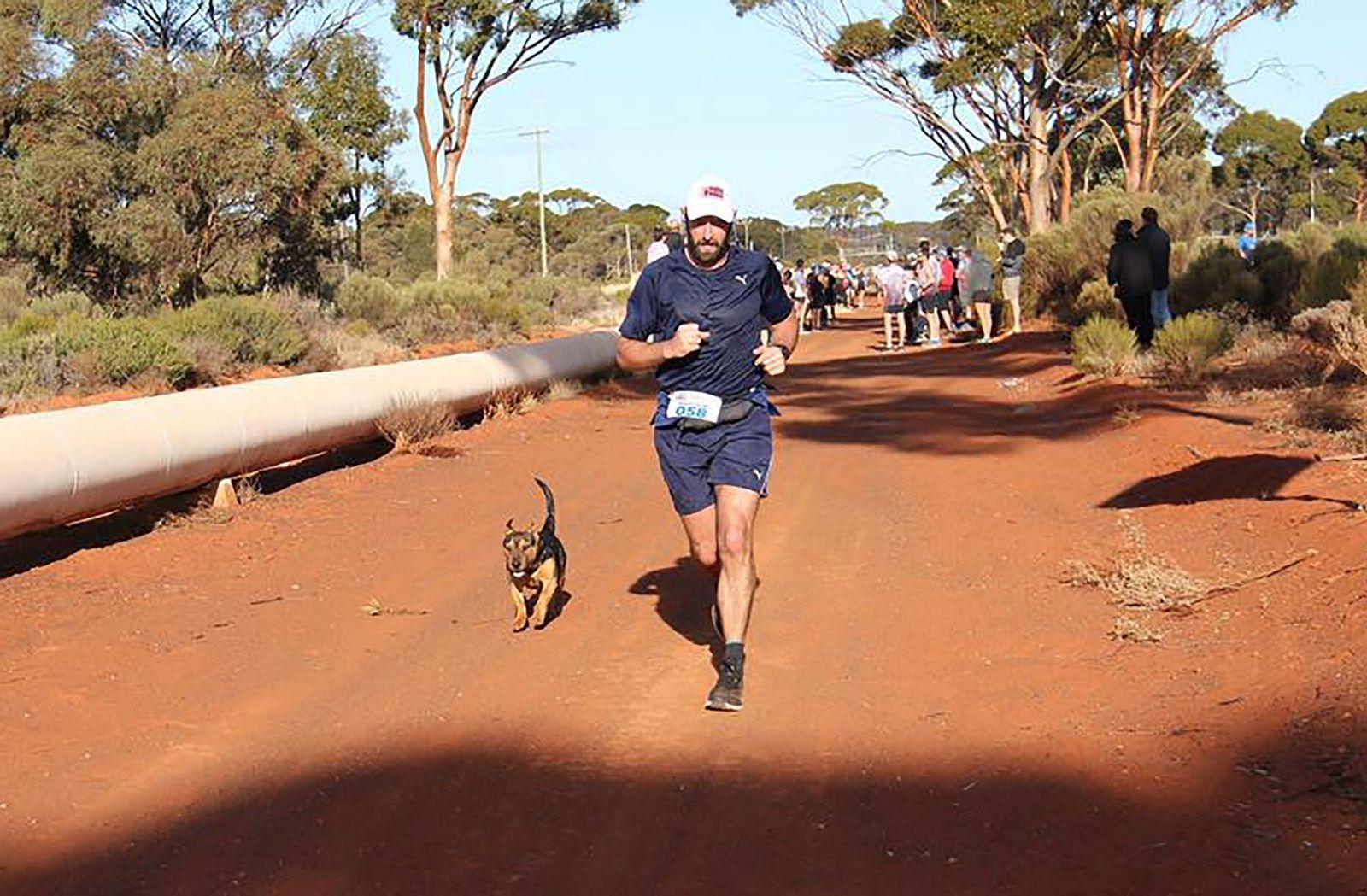 EINMALIGE VERWENDUNG Australien/ Marathon-Hund