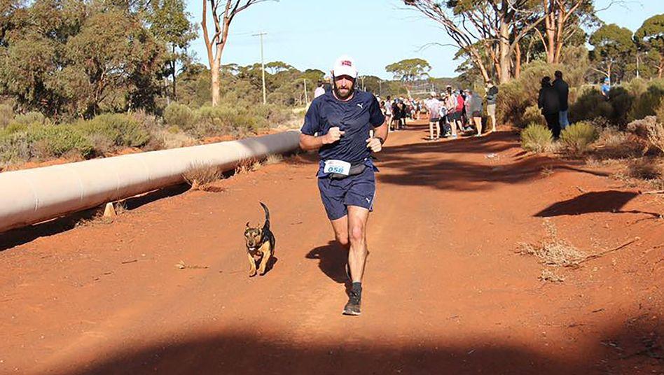Stormy beim Goldfields Pipeline Marathon