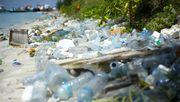 Die Müllinsel