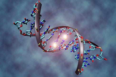 DNA-Sequenz: Zusammenhang zwischen Nachname und Y-Chromosom