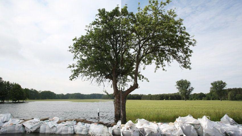 Vor dem Hochwasser und im Hochwasser: Ein Feld bei Kamern in Sachsen-Anhalt