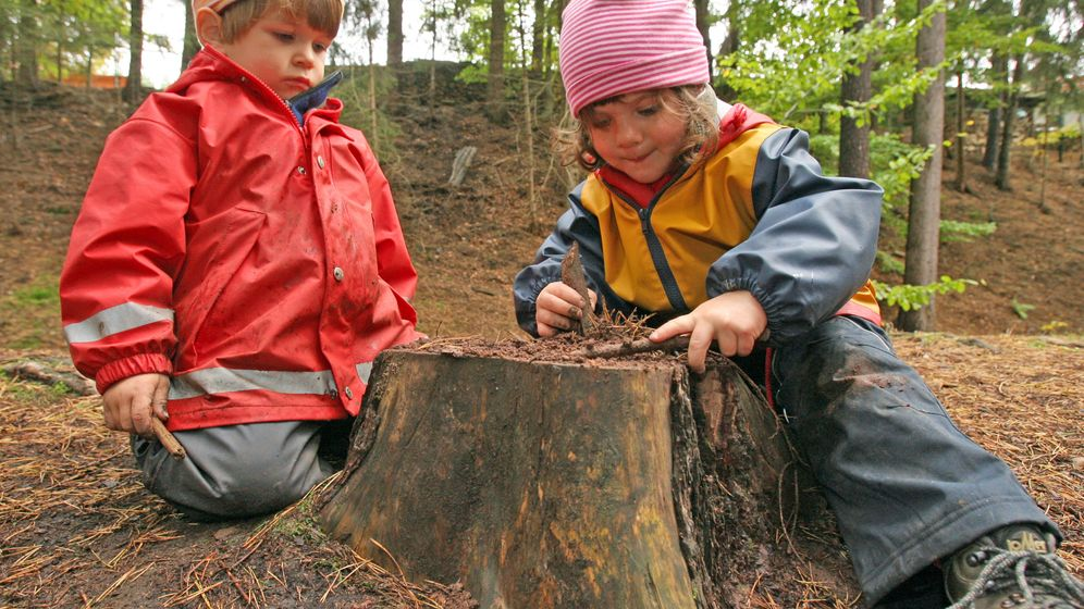 Photo Gallery: A Day at a Waldkindergarten
