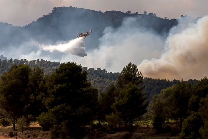 Planes are a key tool in fighting forest fires, and the EU is planning on buying more.