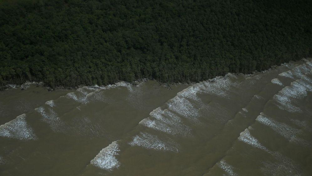 Amazonas: Ölbohrungen bedrohen Naturparadies