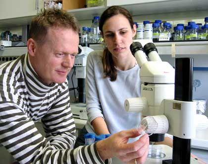 """Biologen Baumeister, Hertweck: """"Ich würde eine solche Pille nicht nehmen"""""""