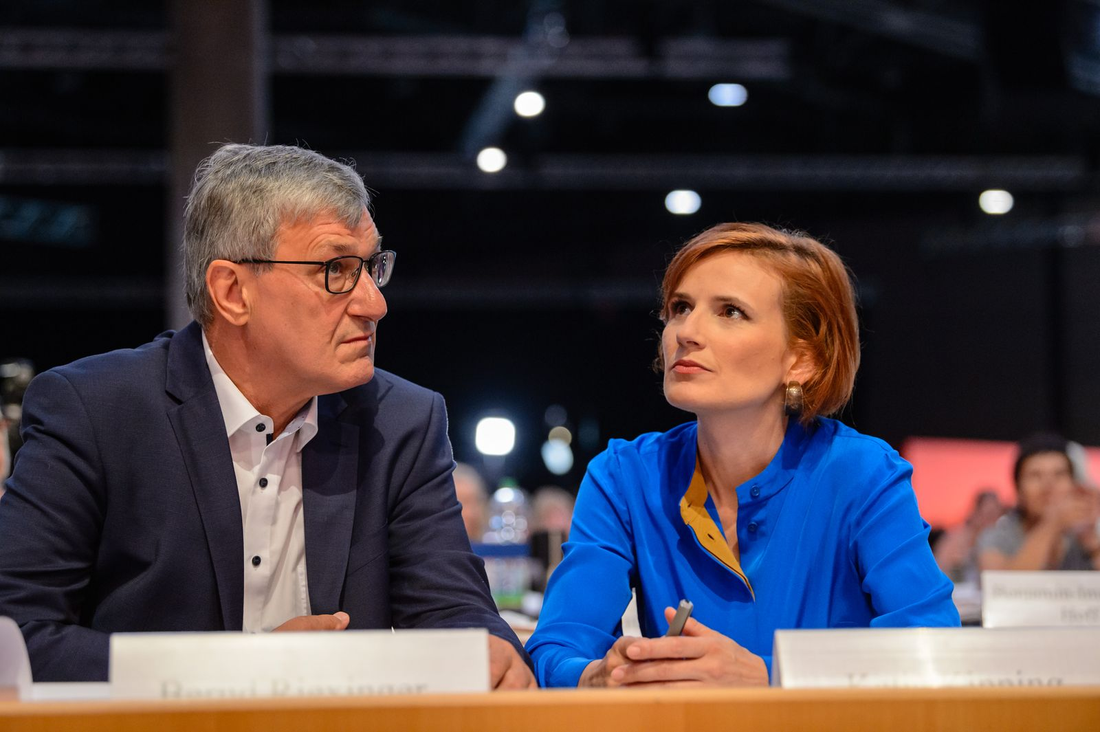 Die Linke Holds Federal Party Congress