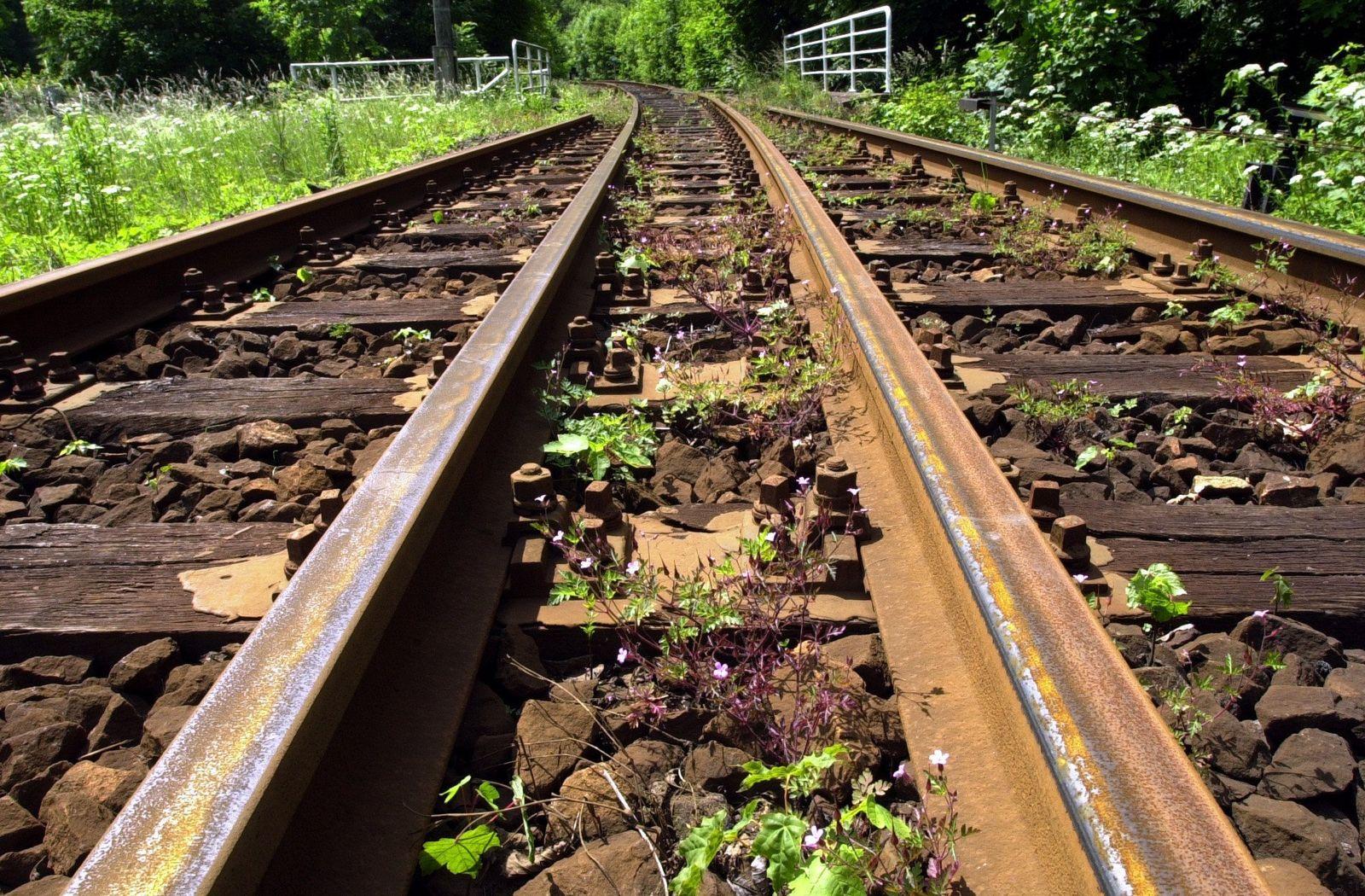 Gleise / Bahnstrecke stillgelegt / Rost