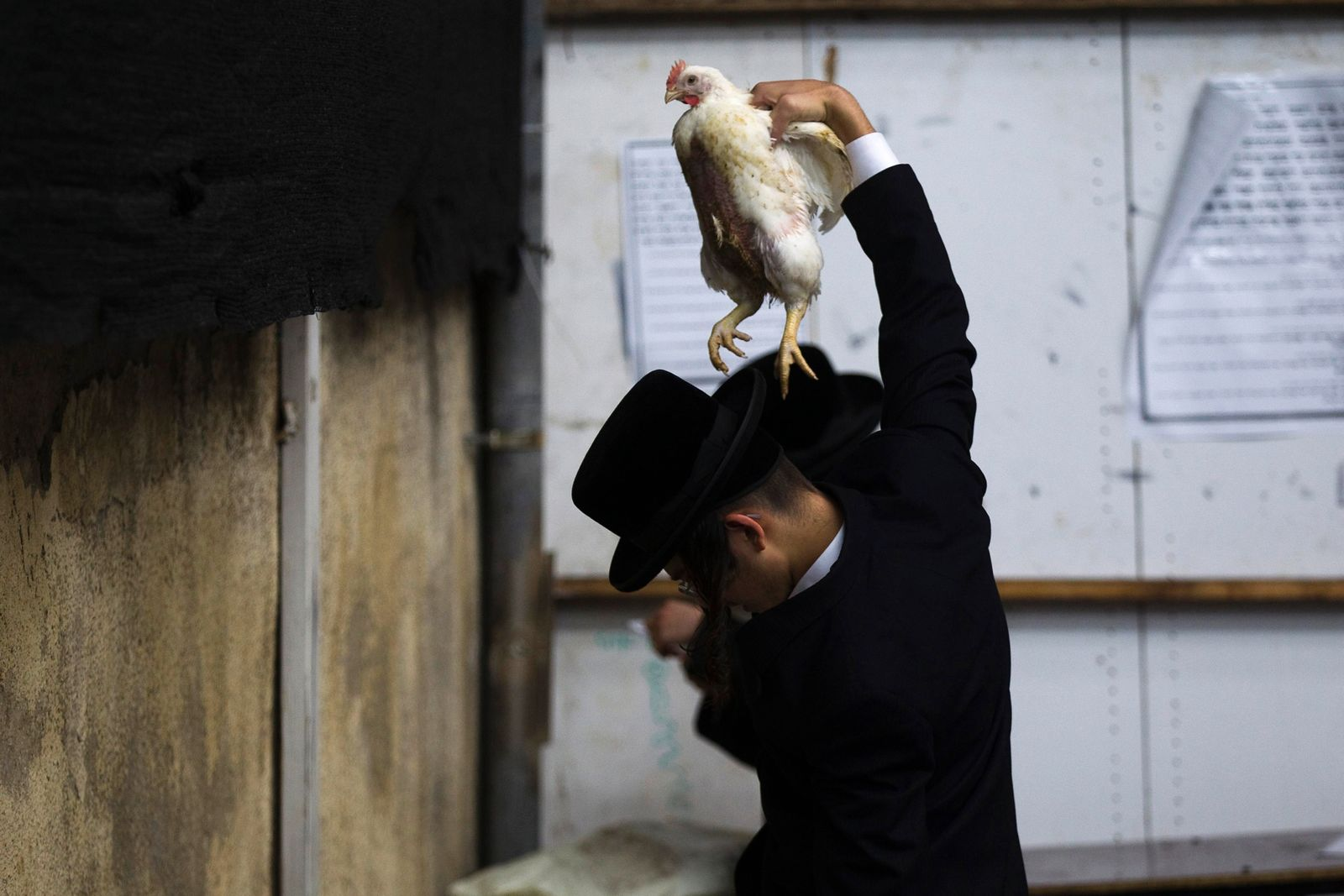 An ultra-Orthodox Jewish man holds a chicken over his head as he performs the Kaparot ritual in Jerusalem