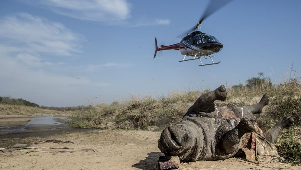 Photo Gallery: Nabbed by the Poachers