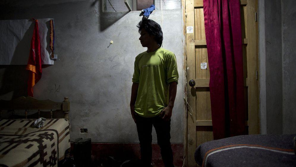 Kokain-Anbau in Peru: Die Arbeit auf den Coca-Plantagen