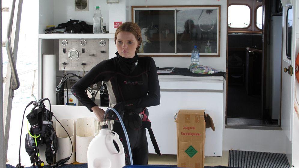 Ochsengalle für Dornenkronen: Unterwegs mit Seesternjägern