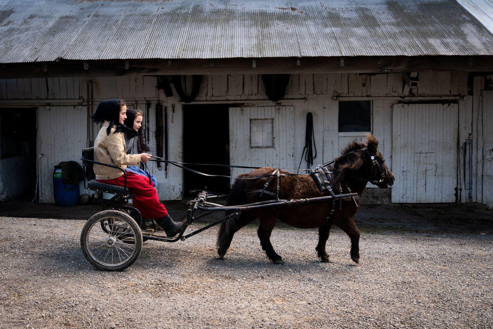 Ohio Amish Virus