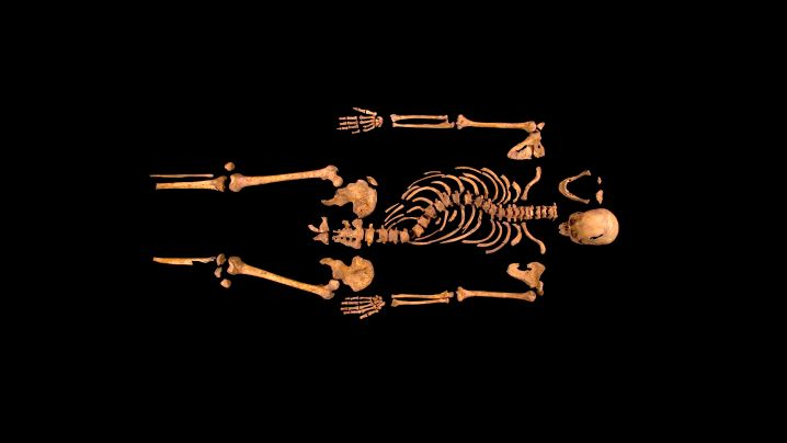 Richard III.: Krummer König