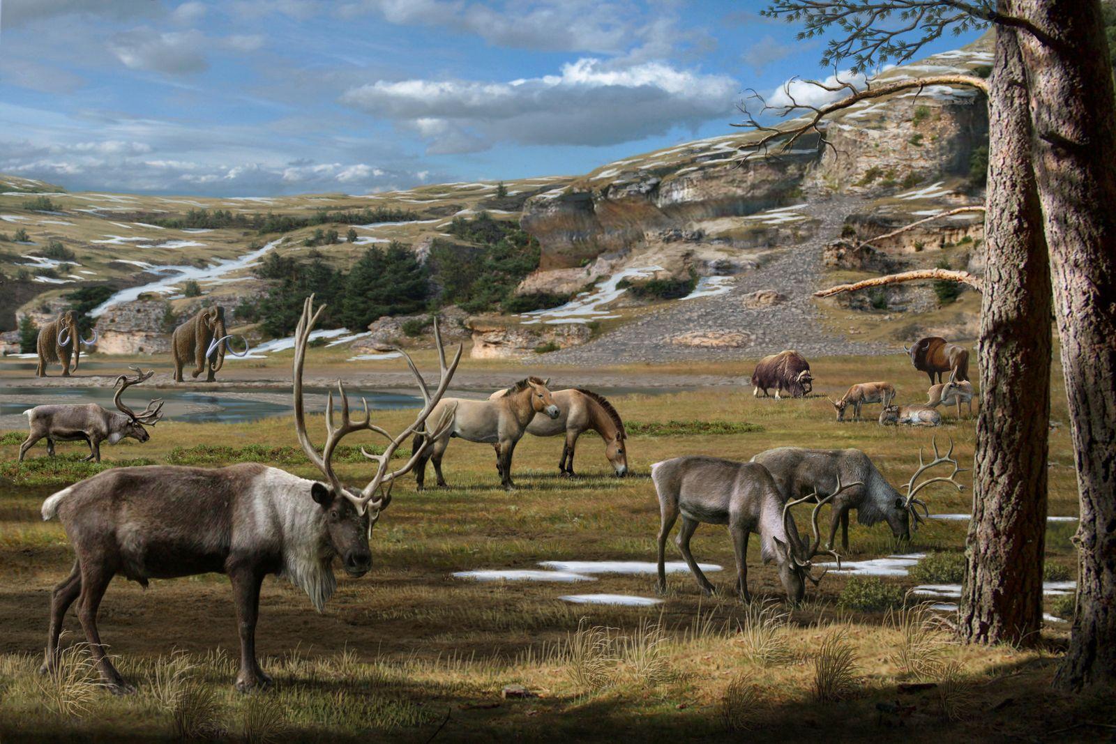 EINMALIGE VERWENDUNG SPERRFRIST 05.02.14, 19 Uhr/ Pleistozän-Landschaft/ Mammut