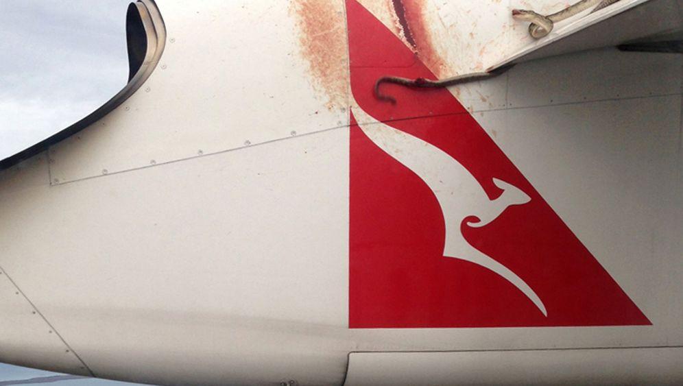 Australien: Python als blinder Passagier
