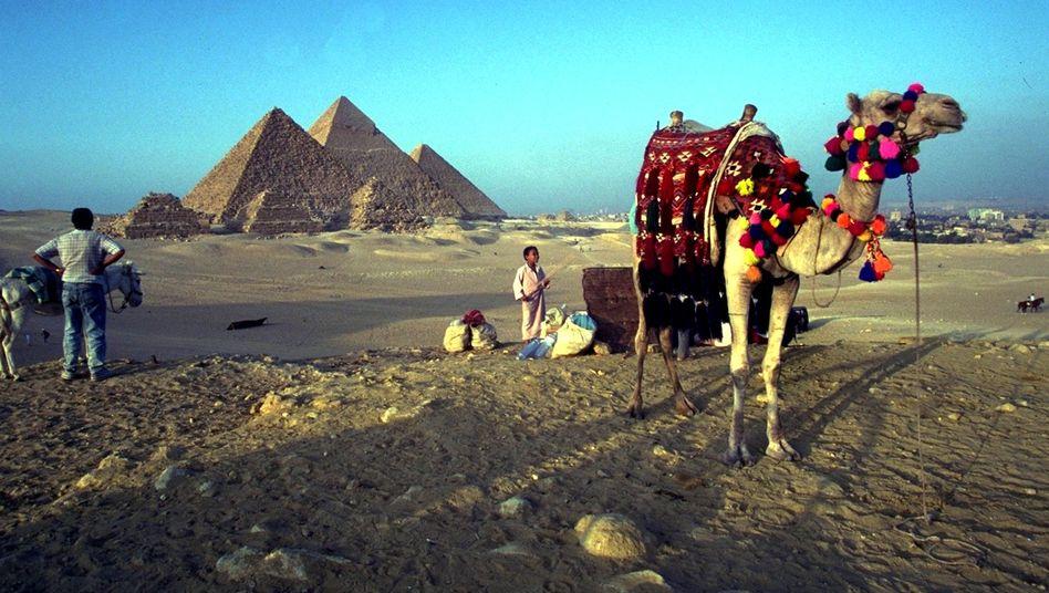 Touristenziel Ägypten: Der Boy bringt das Dosenbier