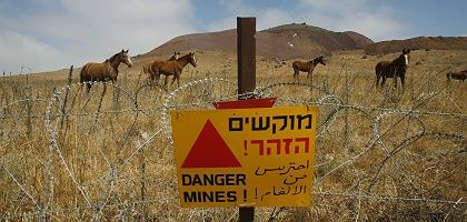 "Horses roam the Golan Heights: ""It is out right to bring the line back to where it was on June 4, 1967."""