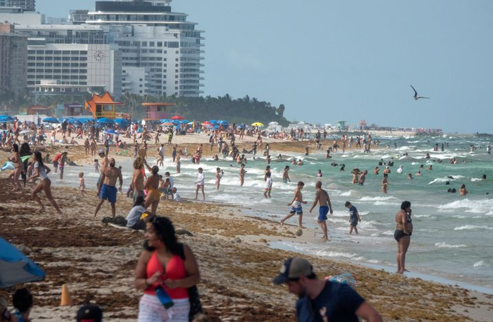 """Strand in Florida: """"Wir kehren nicht um, werden nichts schließen"""""""