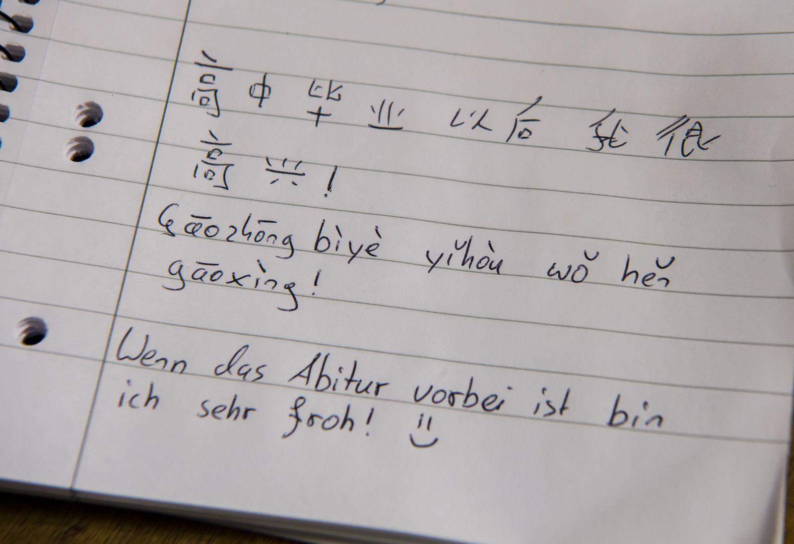 Chinesisch Unterricht am Gymnasium