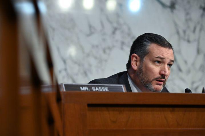 Ted Cruz: Wut in Texas über Bauarbeiten in der Ostsee