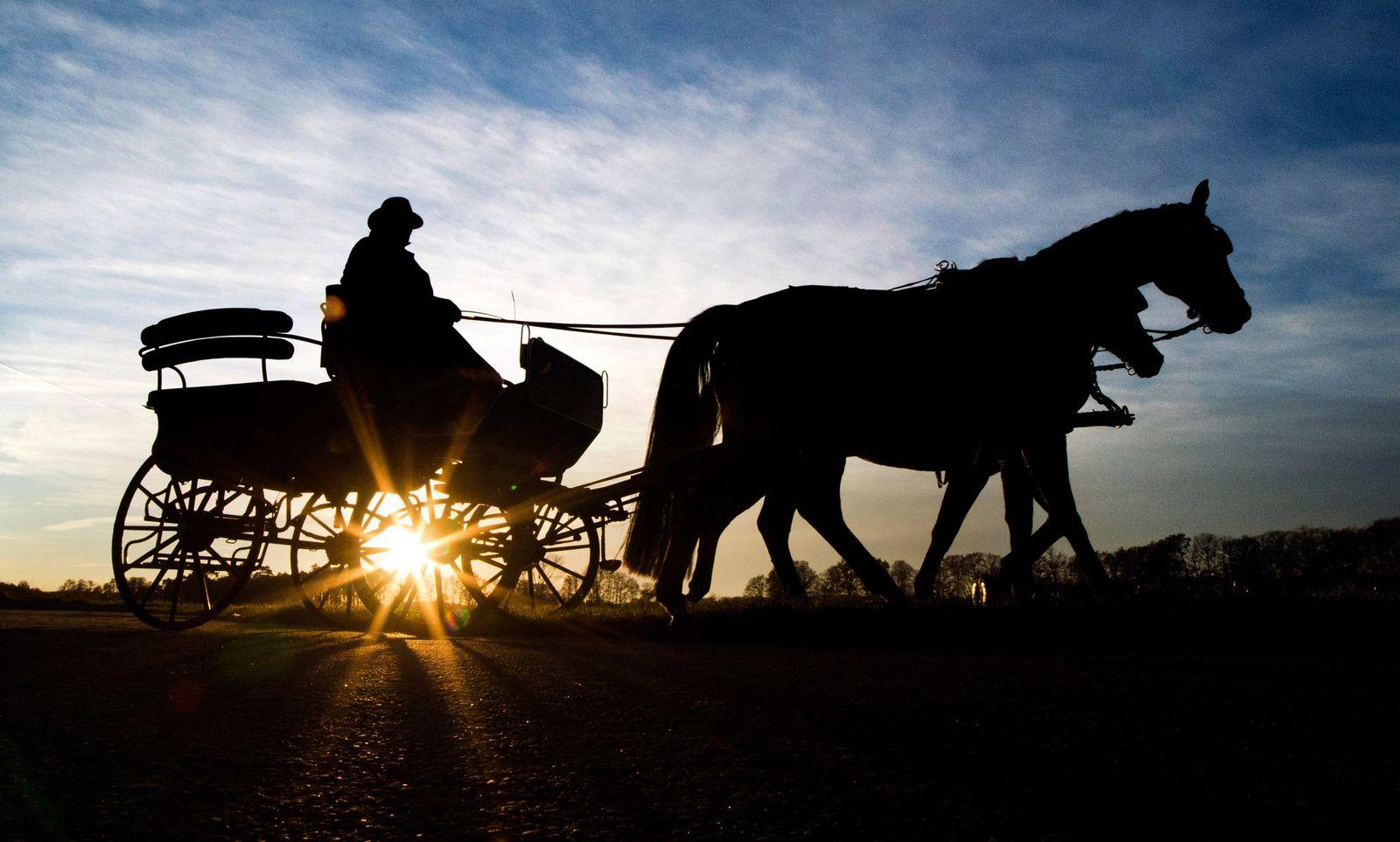 Pferdekutsche im Sonnenuntergang