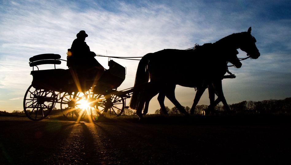 Wahrscheinlich beginnt die Klimabelastung mit der Indienstnahme des Pferdes als Reittier