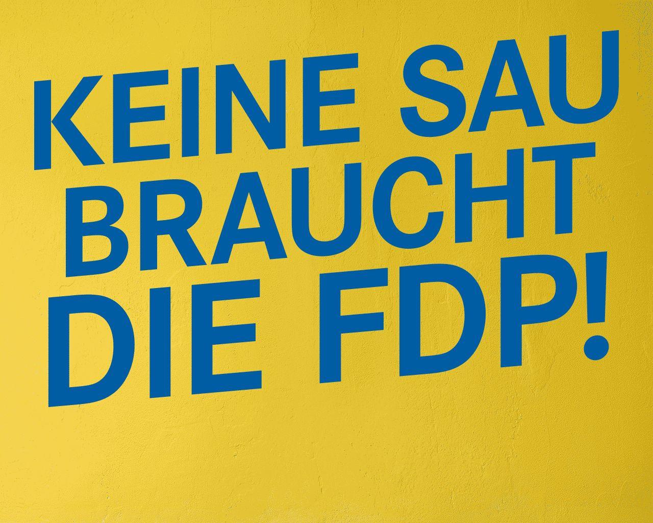 EINMALIGE VERWENDUNG FDP