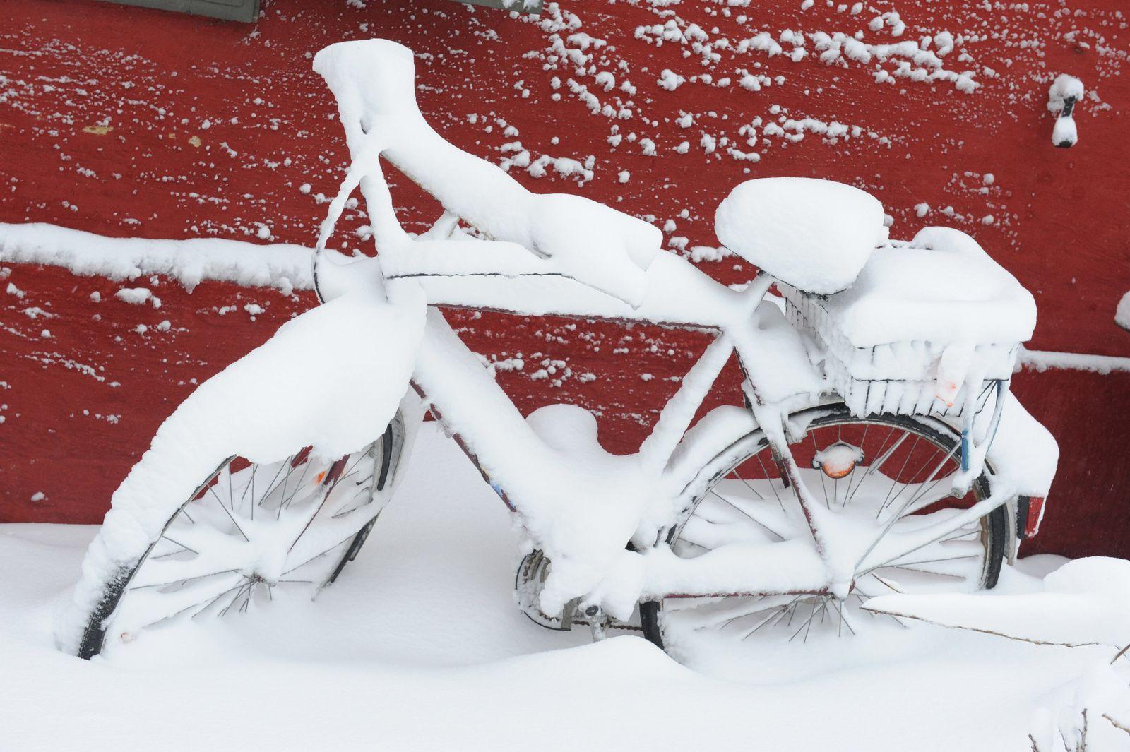 Schnee / Winter / Stralsund