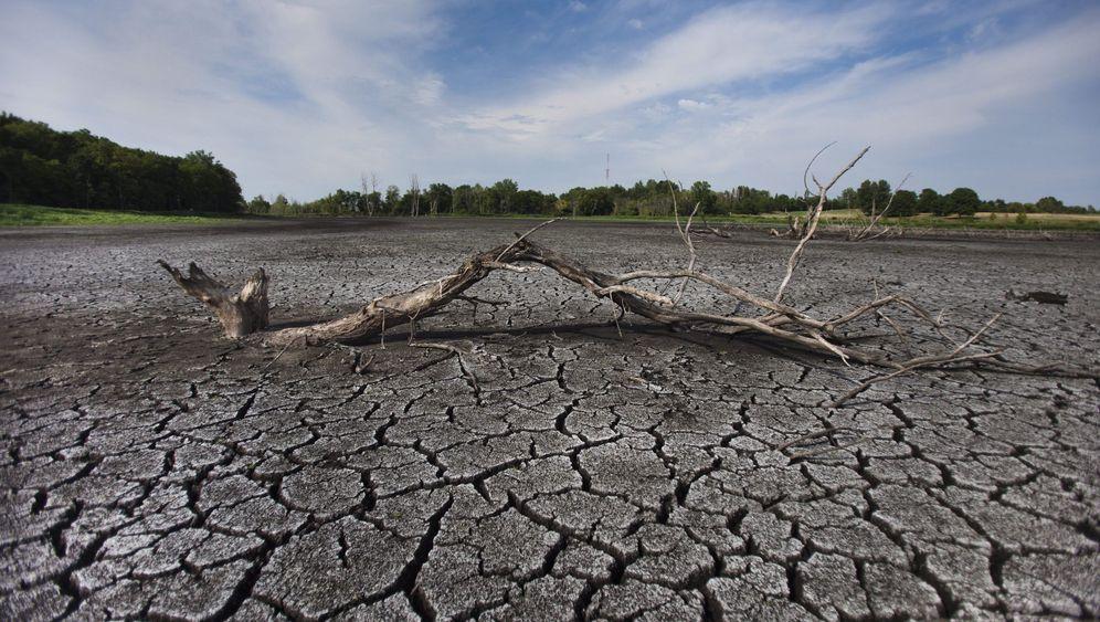 Erwärmung: Forscher warnen vor Erhitzung in den USA