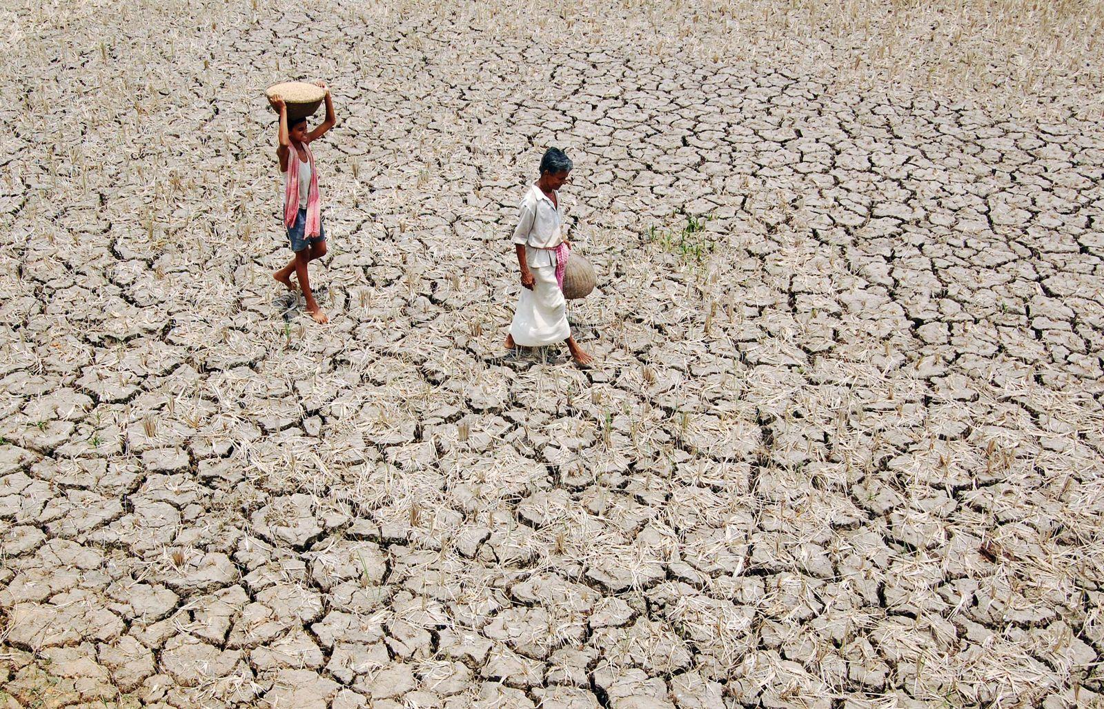 indien dürre mai 2009