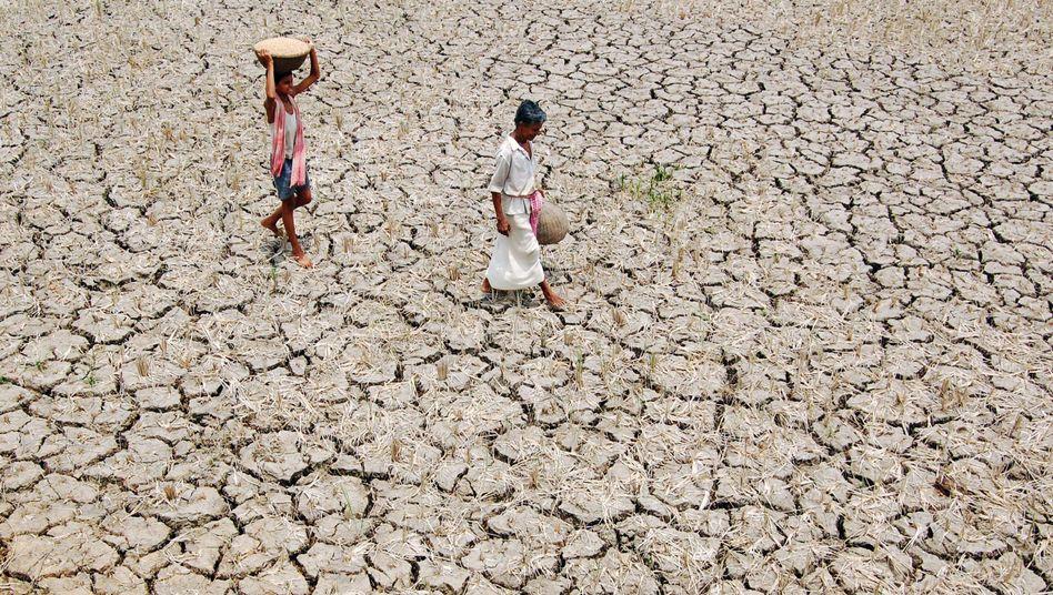 Dürre in Indien (Mai 2009); Forscher warnen vor Ausbeutung der Grundwasservorkommen