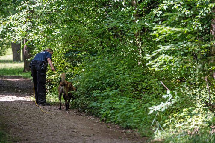 Eine Polizistin sucht mithilfe eines Suchhunds am Rande eines Waldstücks nach Hinweisen.