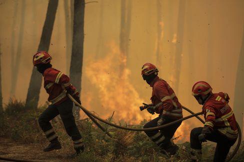 Feuerwehrleute in der Gemeinde Oleiros