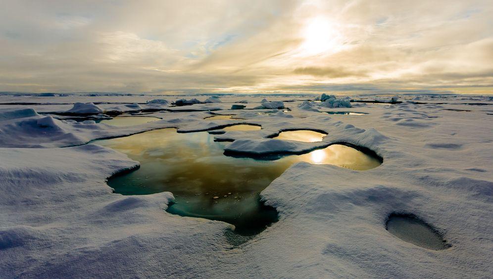 Arktische Algenblüte: Erst weiß, dann grün